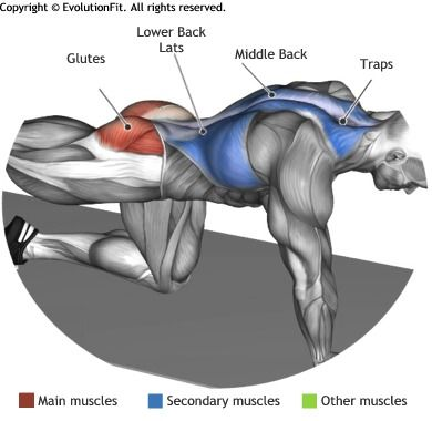 GLUTES -  ALTERNATING SUPERMAN