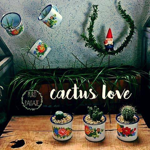 #cactuslove #enamelmugs #puropaisaje #hugme #cactus