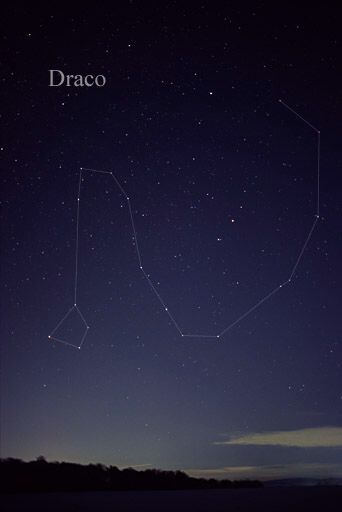 Draco constellation and in ancient times corrupt Rome and elite across milleniums distorted and tried to eliminate Draco's wings. Draco is not a worm but a dragon with wings.