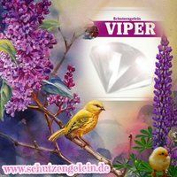 Viper Nachtcreme gegen Falten, parfumfreie Antiagingcreme... https://www.amazon.de/dp/B076HXLC8D/ref=cm_sw_r_pi_dp_x_OMF.zbVYXRHRS