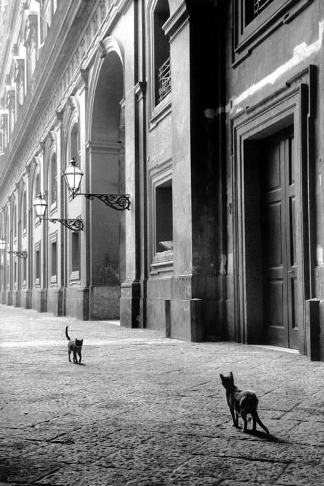 LEONARD FREED  Italy. Naples. 1958. Freed (1929, Brooklyn, New York – 2006) was a documentary photojournalist.
