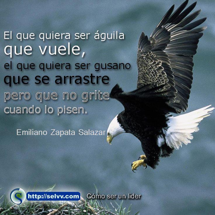 """""""El que quiera ser águila que vuele, el que quiera ser gusano que se arrastre pero que no grite cuando lo pisen"""". Emiliano Zapata Salazar http://selvv.com/como-ser-un-lider/"""