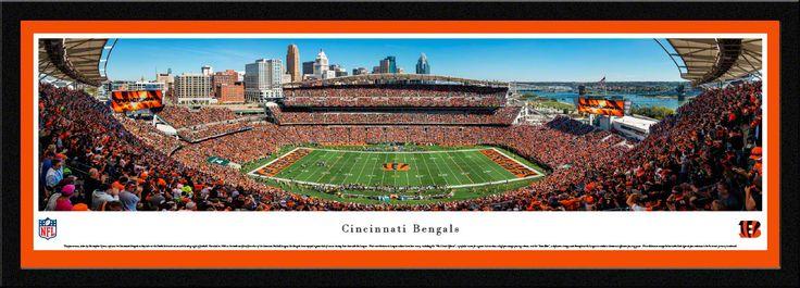 Cincinnati Bengals Paul Brown Stadium 50 Yard Line Panoramic Picture