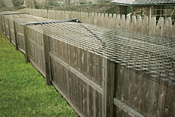 Purr...fect Fence - Keeping Cats Happy and Safe... Outdoors.