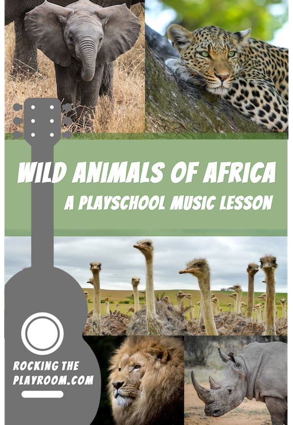A preschool or playschool music lesson all about Africa's wild animals. Use it as a preschool or homeschool lesson, or do one or two activities at home with your kids.