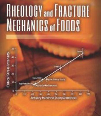 Rheology And Fracture Mechanics Of Foods PDF