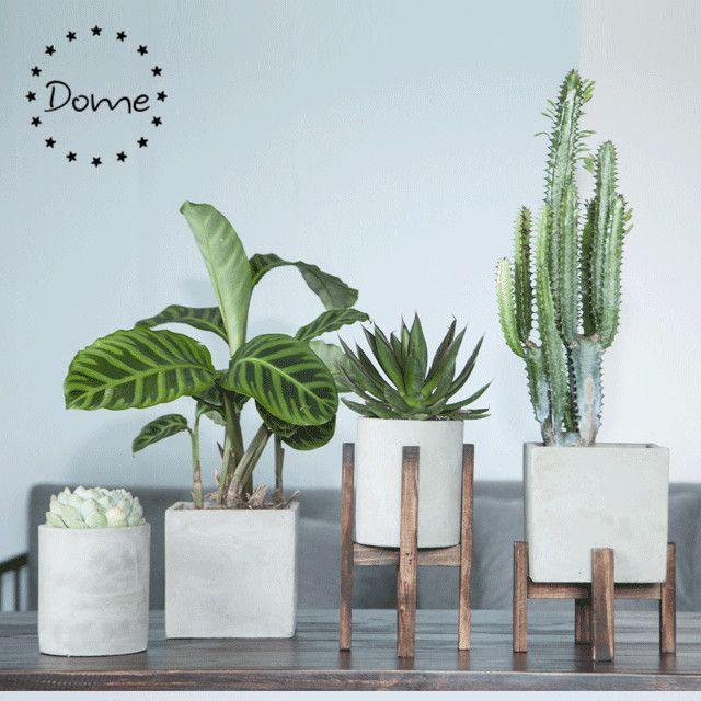 Wholesale Indoor Round Concrete Crafts Cement Planter Pot With