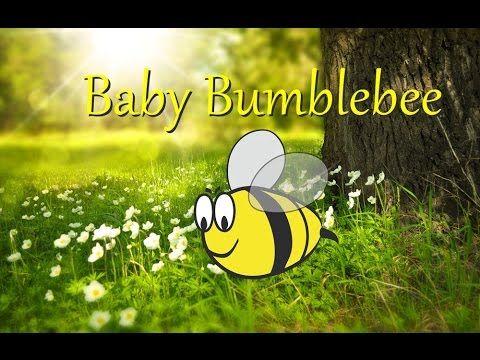 Baby Bumblebee video!