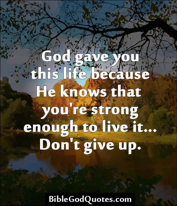 Bible Quotes Never Give Up: Quotes,Sayings And Verses