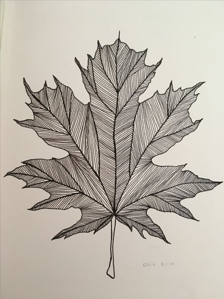 Black ink leaf 29.11.16