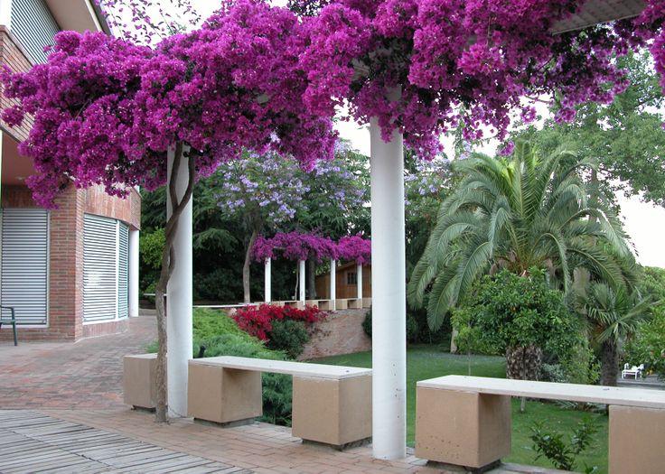 Ideas de casas de jardin estilo mediterraneo dise ado for Estilos de jardines para casas