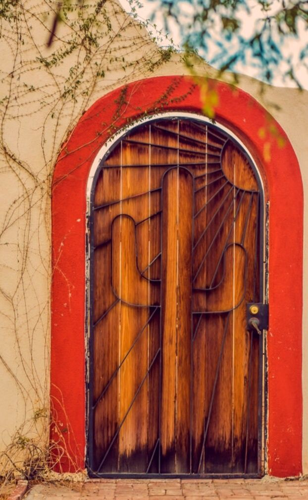 Tucson, Arizona- curved door, wood, metal work and welding. What a better project than this?