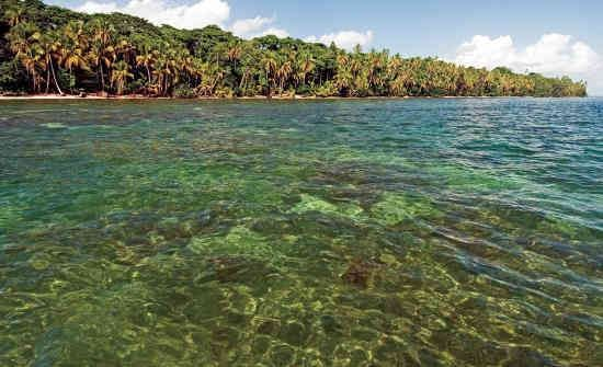 Cahuita National Park Snorkeling; This is a list of the best spots to snorkel and dive in Costa Rica