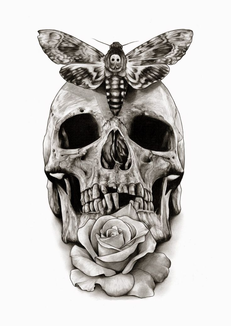 This particular head body art was by Carlos Torres and his edition has me picture that that individual passed away quietly and now their head can be found quietly among the flourishing flowers. Carlos...