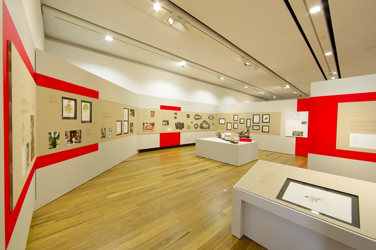 Inside one of our spacious new galleries. http://www.museumofbrisbane.com.au/