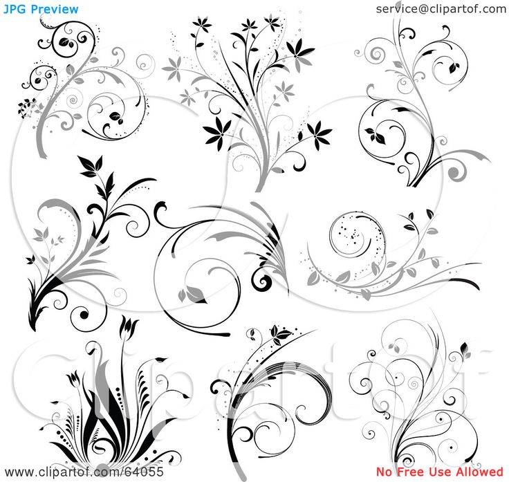 cute scroll stencil designs. Black And White Floral Scroll Design Elements  On 34 best scrolls images on Pinterest design patterns