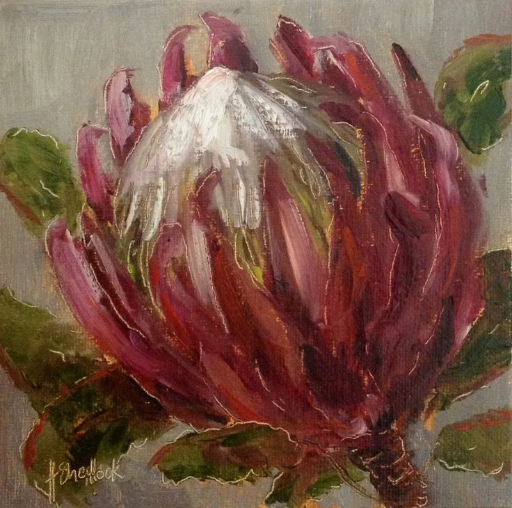 """Patriotic Protea #70"" daily painting by Heidi Shedlock"