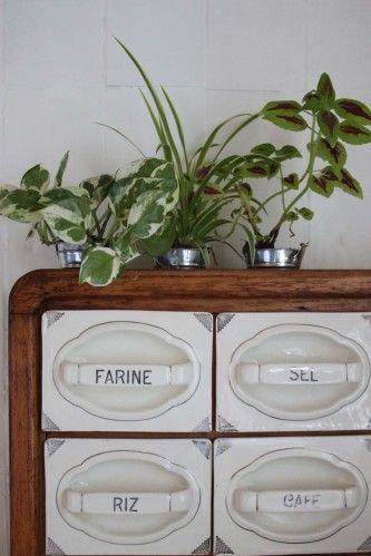 Urban Jungle Bloggers: My Plant Shelfie via Ma petite usine à souvenirs
