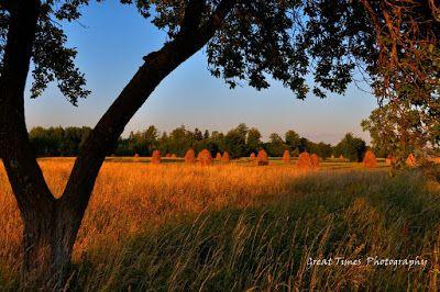 Cacica (Polish: Kaczyka) is a commune located in Suceava County, Romania, in the region called Bucovina http://greattimesphotography.blogspot.ro/2015/07/cacica-kaczyka.html