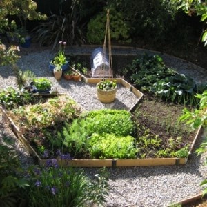 Compact Rotational Gardening with Raised Beds » The Homestead Survival