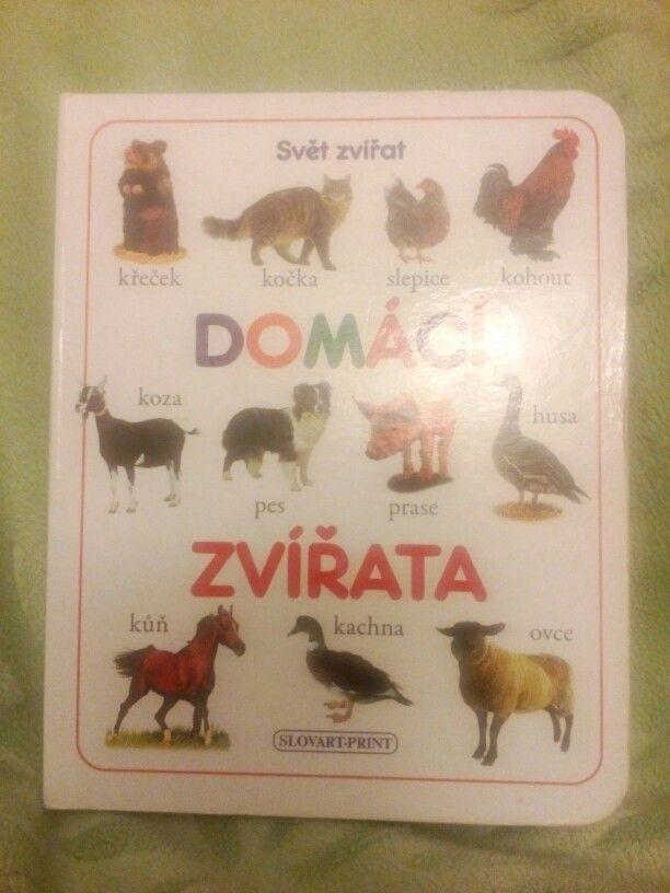 Svět zvířat - Domácí zvířata