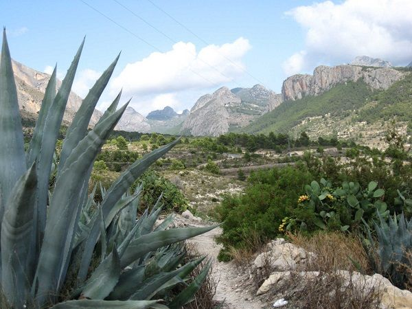 Bezoek je het achterland van de Costa Blanca, dan mag je de prachtige omgeving van Sella niet overslaan. Het dorp aan de voet van de Sierra Aitana, doet nog erg Moors aan. Toen in de zeventiende eeuw alle Moren het land uit werden gezet, bleef Sella leeg achter. Pas een kwart eeuw later werden er immigranten uit Mallorca gehaald om het dorp nieuw leven in te blazen, en de vele omliggende terrassen met olijf- en amandelbomen te verzorgen. In de omtrek zijn schitterende  wandelingen te maken.