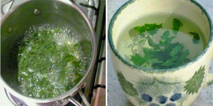 L'eau au citron est un rituel matinal de plus en plus répandu. Voici l'erreur à éviter en la préparant.