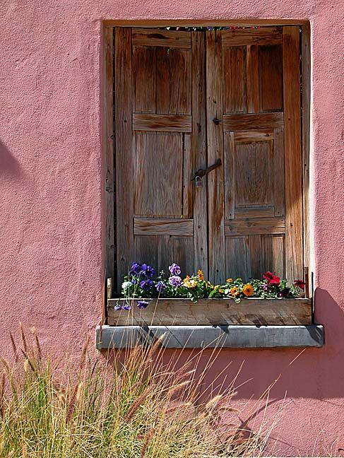 Window Box Tucson, AZ