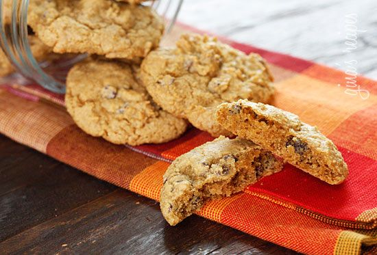 low-fat pumpkin spiced chocolate chip cookies. i'm on a mission to find