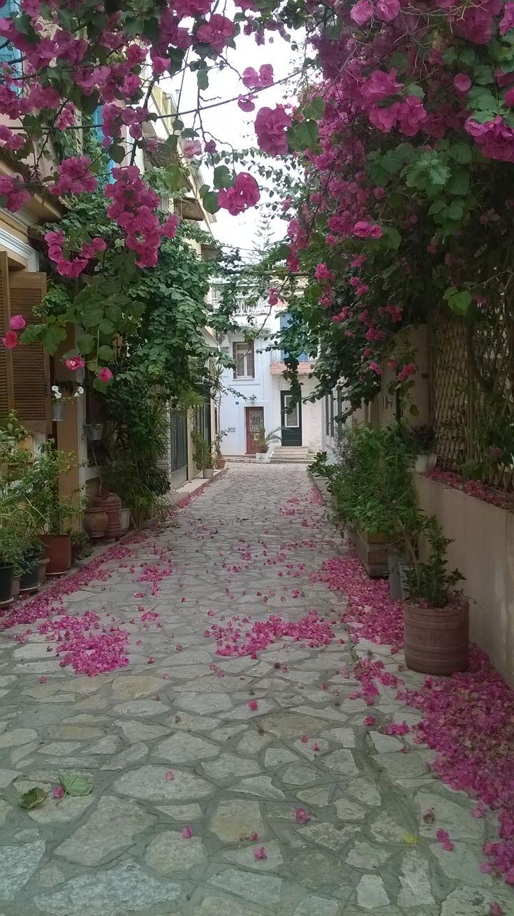 Preveza - Epirus, Greece