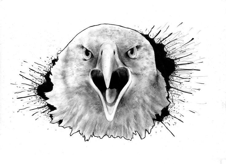 Trabajo a pedido (Águila) | Dibujo a lápiz sobre papel