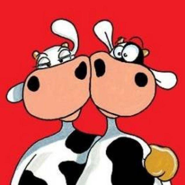 Vacas C (105).jpg (640×640)