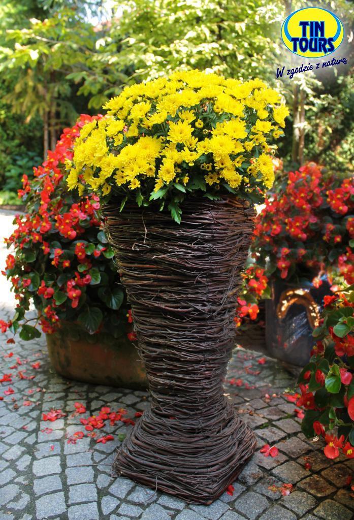 Wazon z brzozy na kompozycje kwiatowe
