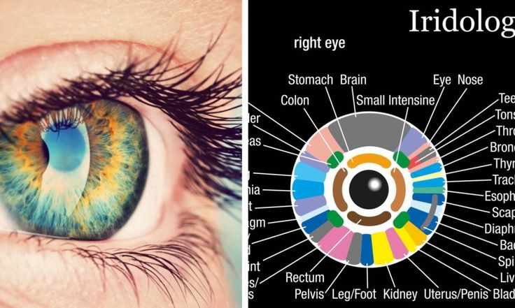 Did you know that your iris can reveal a lot about your emotional, mental, physical and spiritual health? What does yours say about you?