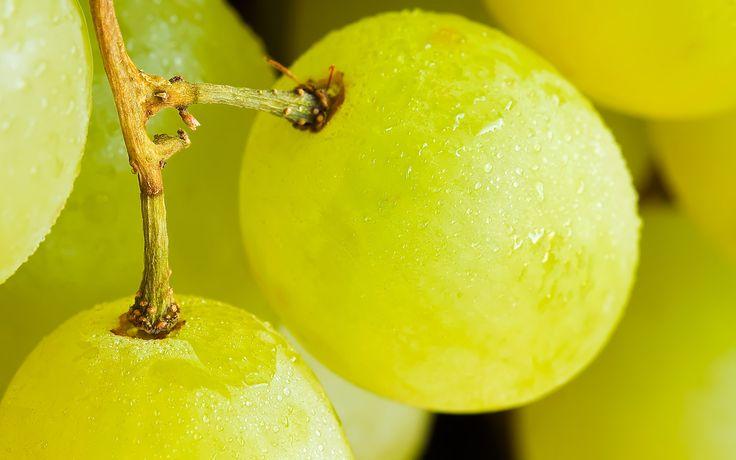 Detalle de un racimo de uvas blancas.