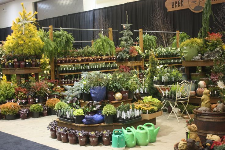 how to prepare a plant nursery