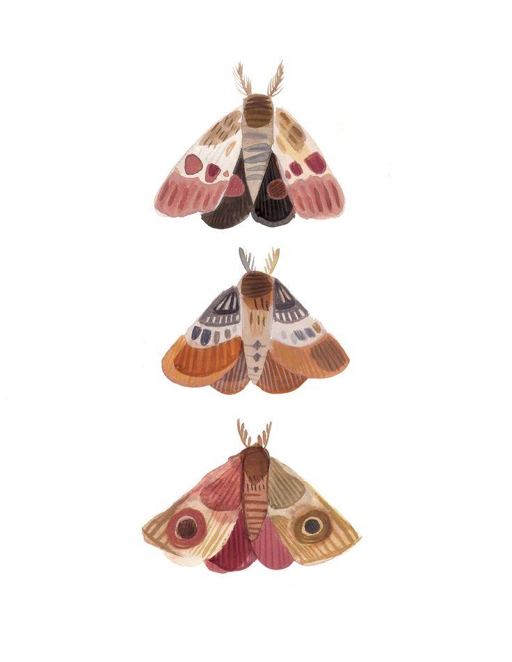 Three Moths - Nature Art Print, Wall art, Bedroom decor, moth art print, nature illustration, Kass Reich in 2019 | Illustration | Pinterest | Illustration art,…