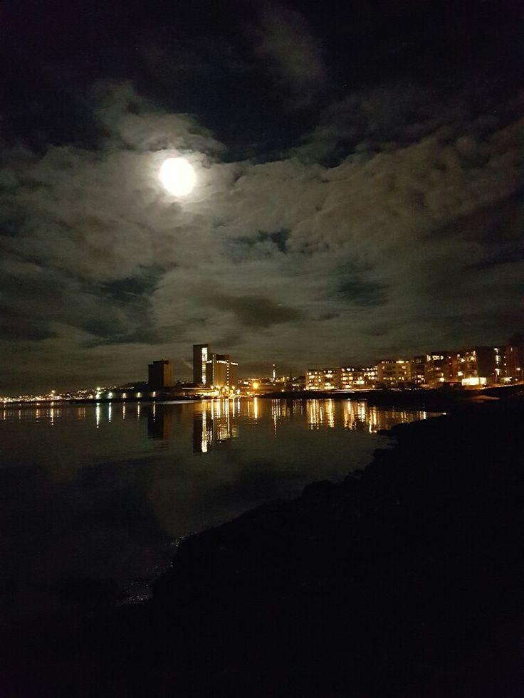 Ilsvika, Trondheim, Norway, Scandinavia, Europe, Earth. Beautiful!