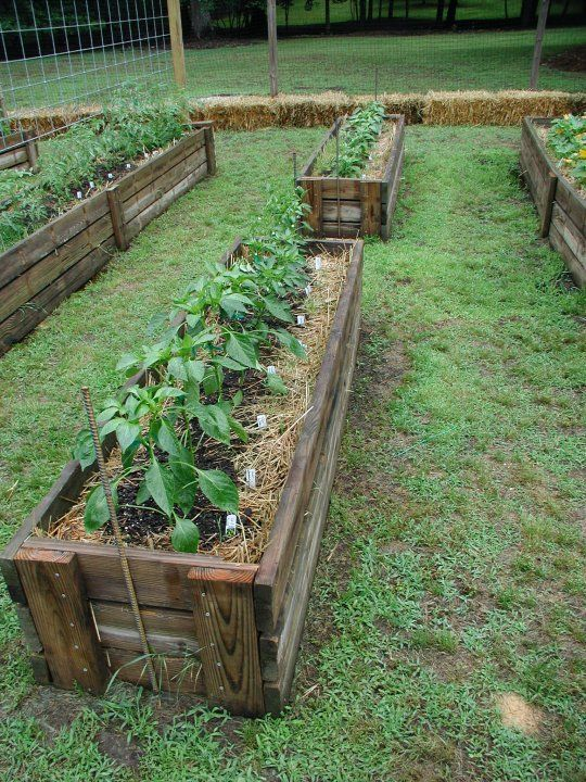 Strawbale gardening - neater than other strawbale gardens I've seen...kind of a cross between straw bale and permanent/traditional raised beds ~ Inland Empire Real Estate Journal