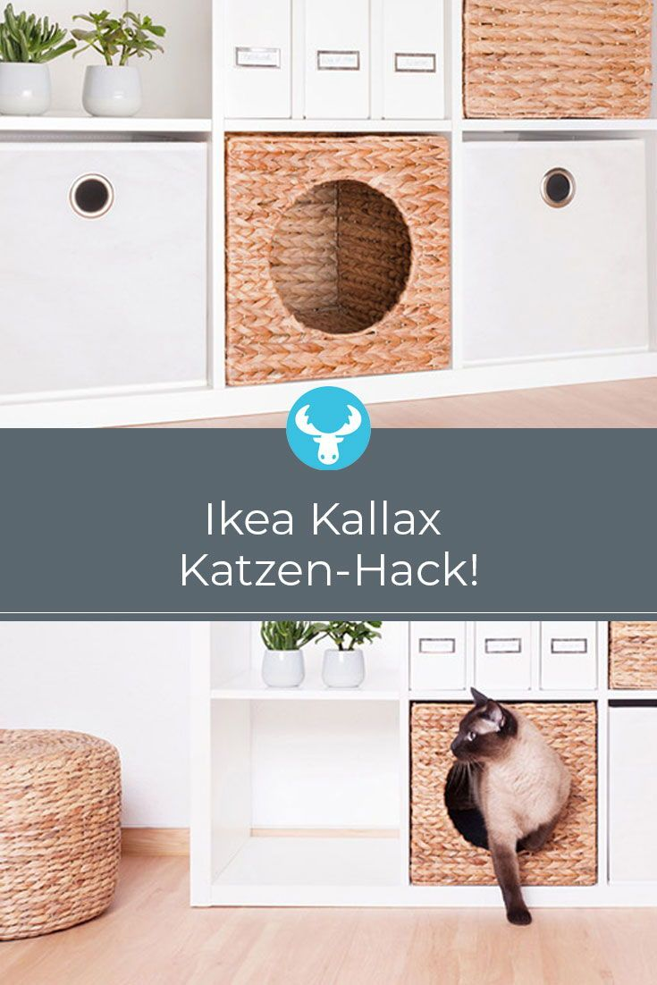 Katzenkörbchen für Ikea Kallax Regale