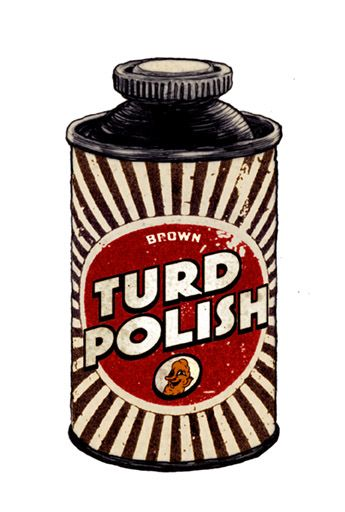 Image result for Image of a polished turd