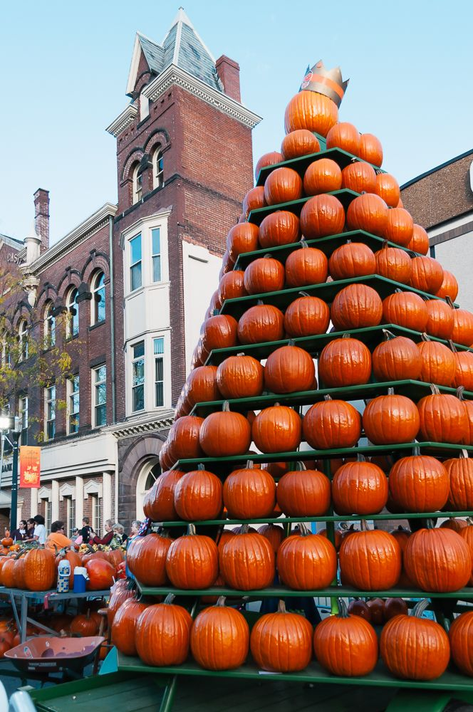 The Circleville Pumpkin Show | Thought & Sight