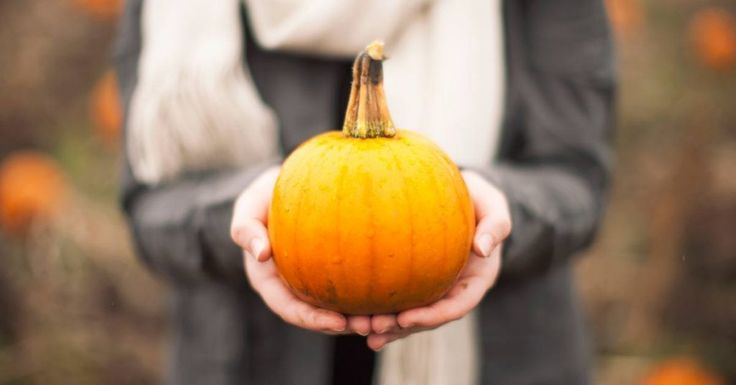 Pumpkin Nutrition Review � What Is It Good For?