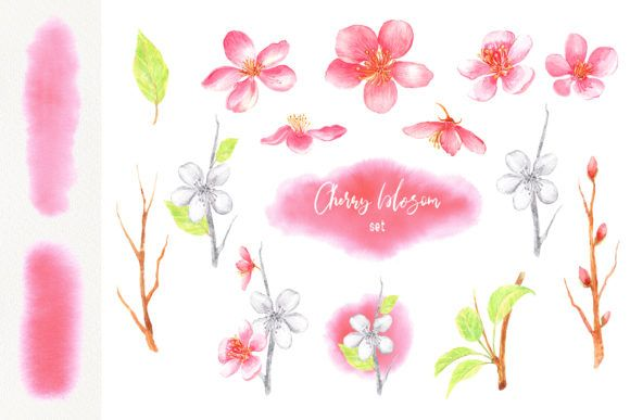 Watercolor Spring Blossom Clip Art Spring Blossom Graphic
