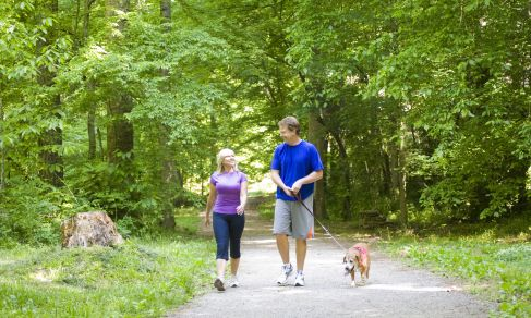 10 week walking program