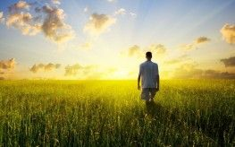 Vitamin D Deficiency Linked to Aggressive Prostate Cancer : Natural Society