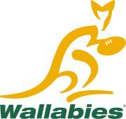 the Wallabies - Australian Rugby Union team