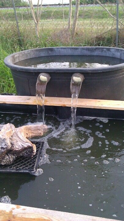 44 best pond filters images on pinterest backyard ponds for Homemade biofilter for duck pond