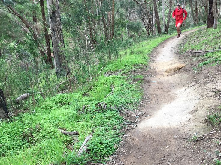 Running Alive - Join the running journey and create your own run journey. Trailrunner Ultramarathon