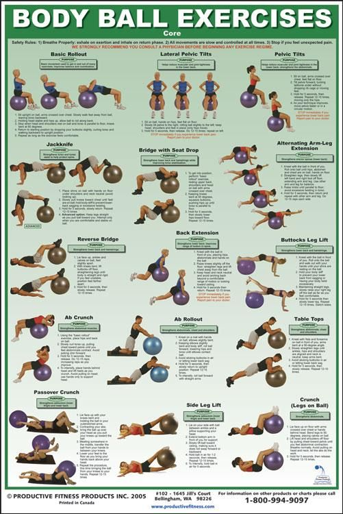 Stability Ball Core Exercises Chart   Power Systems Core Chart 79930 - $28.99